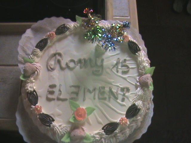 Romy Dreezen - ijstaart voor 15de verjaardag, familiefeest, Gruitrode